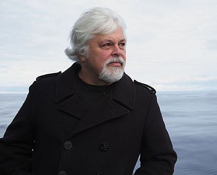 photo of a bearded man with the sea in the background