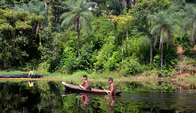 photo of young men paddling a canoe on a river in a forest