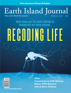 cover, Spring 2017 Earth Island Journal