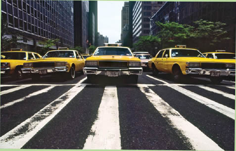 photo of many yellow taxicabs waiting at a crosswalk