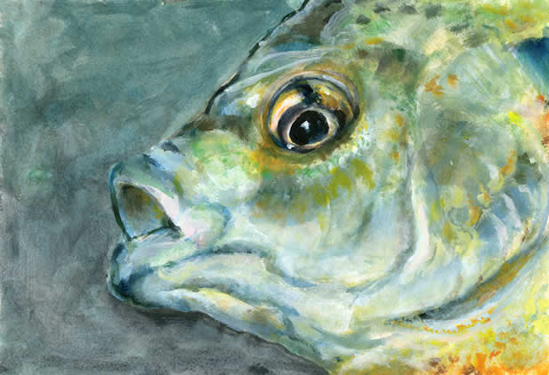 painting of the eyes and mouth of a fish