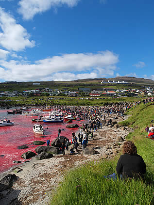 photo of a beach, crowded with people and boats, the water is bright red with blood