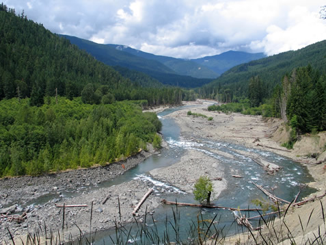 photo of a river in a wooded valley
