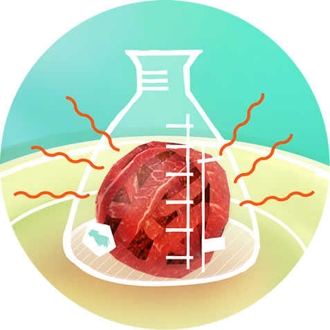photo collage depicting a ball of meat inside a beaker, cartoon of a cow