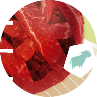 detail of a photo collage depicting a ball of meat inside a beaker, cartoon of a cow